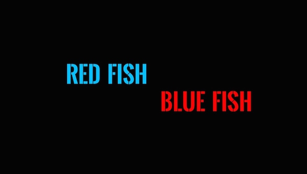 The Indiegogo Report: 'Red Fish Blue Fish'