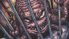 'TMNT Ongoing #73:' Advance Comic Book Review