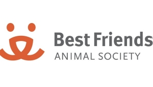 Geeks Care: How You Can Help Best Friends Animal Society, CATFE, and NKLA Pet Adoption Center