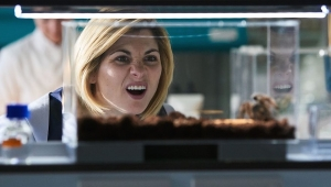 'Doctor Who: Series 11, Episode 4 - Arachnids in the UK' - TV Review