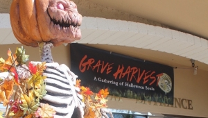 Grave Harvest Kicks Off October for Orange County